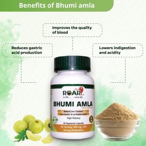 Health Benefits of Extra Strength BHUMI AMLA