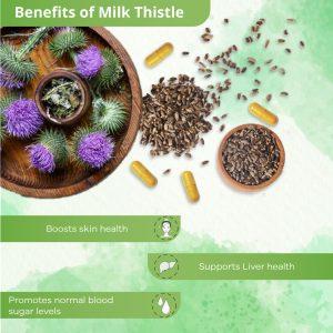 Benefits of MILK THISTLE
